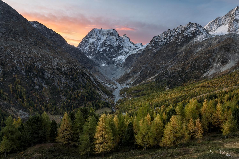 Golden Season ! by Fabrice Petruzzi