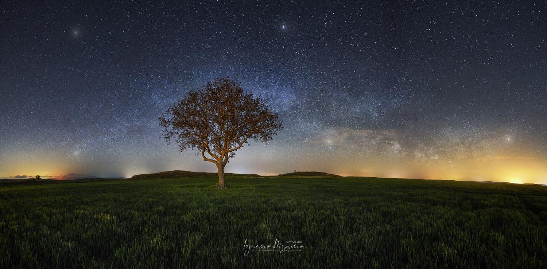 Sweet dreams by Ignacio Municio