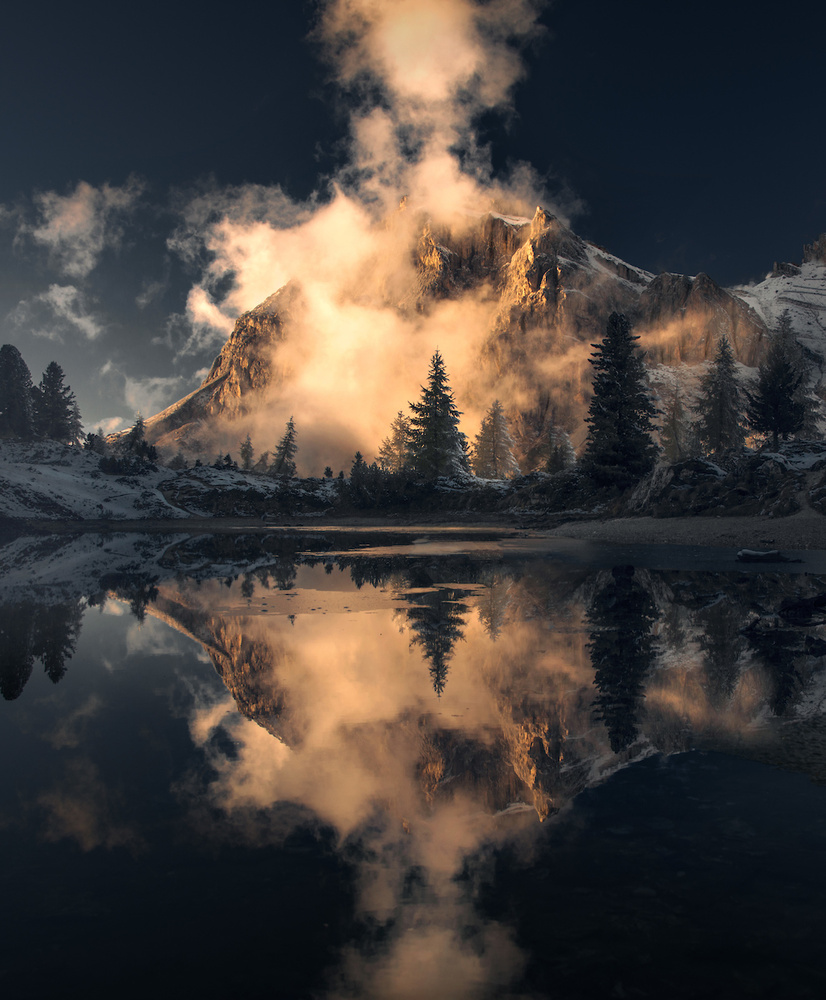 The One by Max Rive