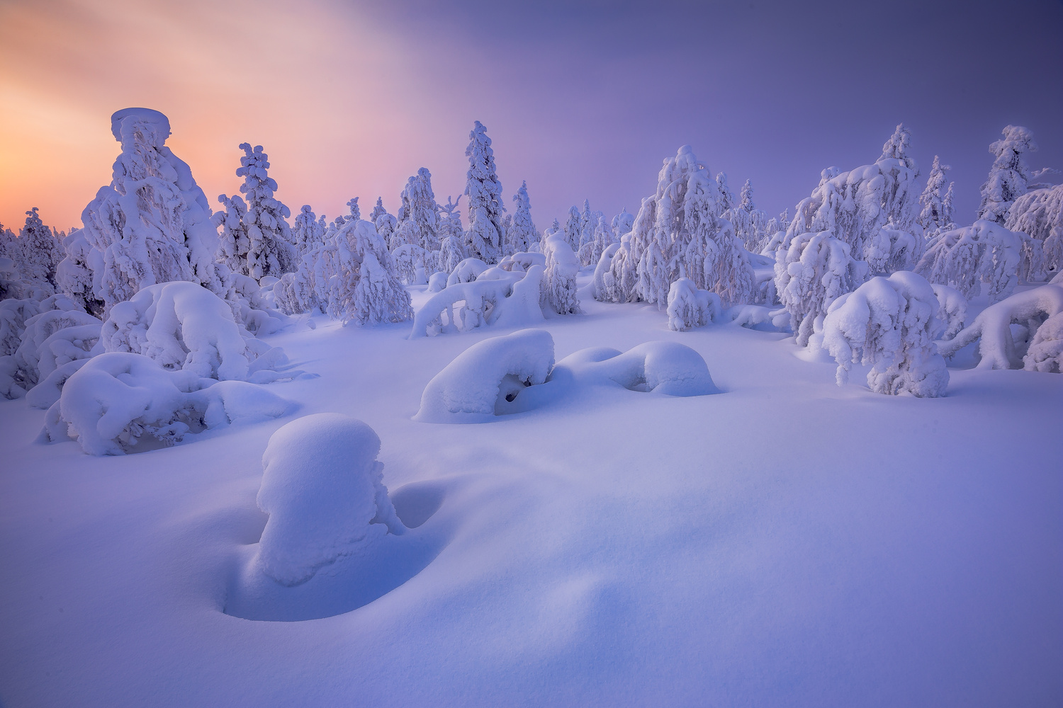 Colorfull  Winter by Check My Dream