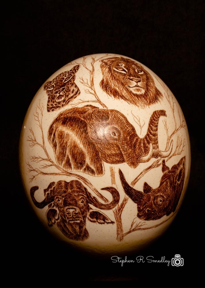 Designer African Egg by Stephen Smedley