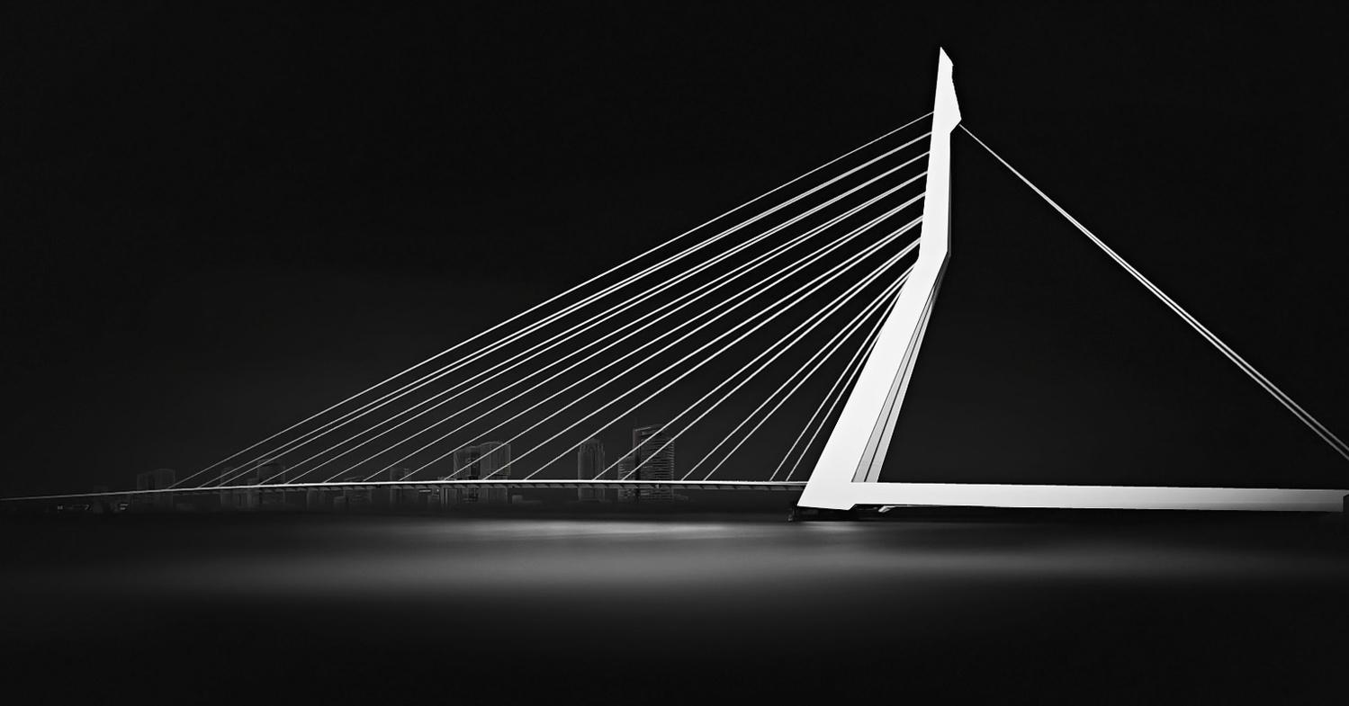 Erasmusbridge Rotterdam by Kevin Plovie