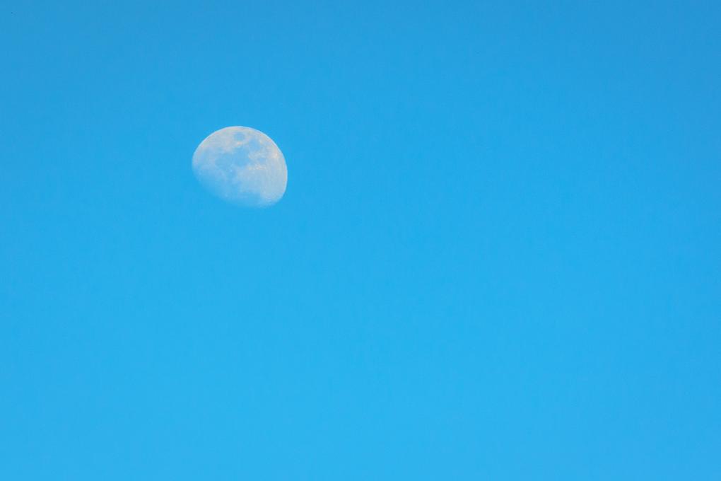 Day Moon by Walter Rachel