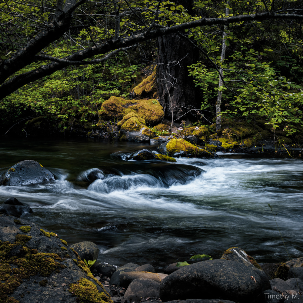 South Cow Creek by Tim McBroome