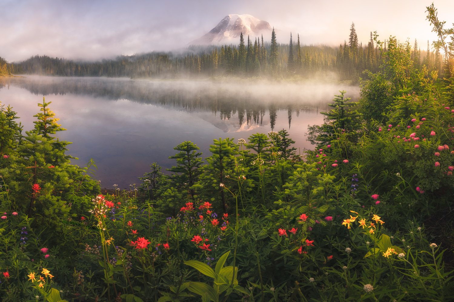 Misty Mornings by Eric Thiessen