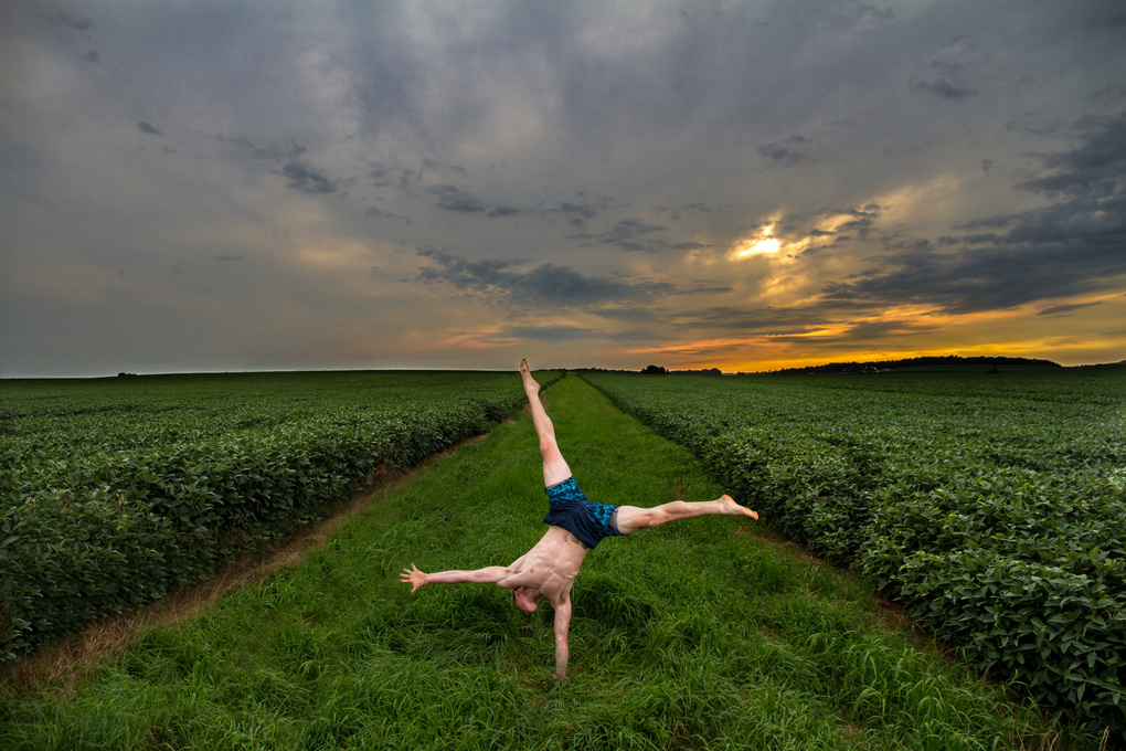 Yoga & Field by Will McKay