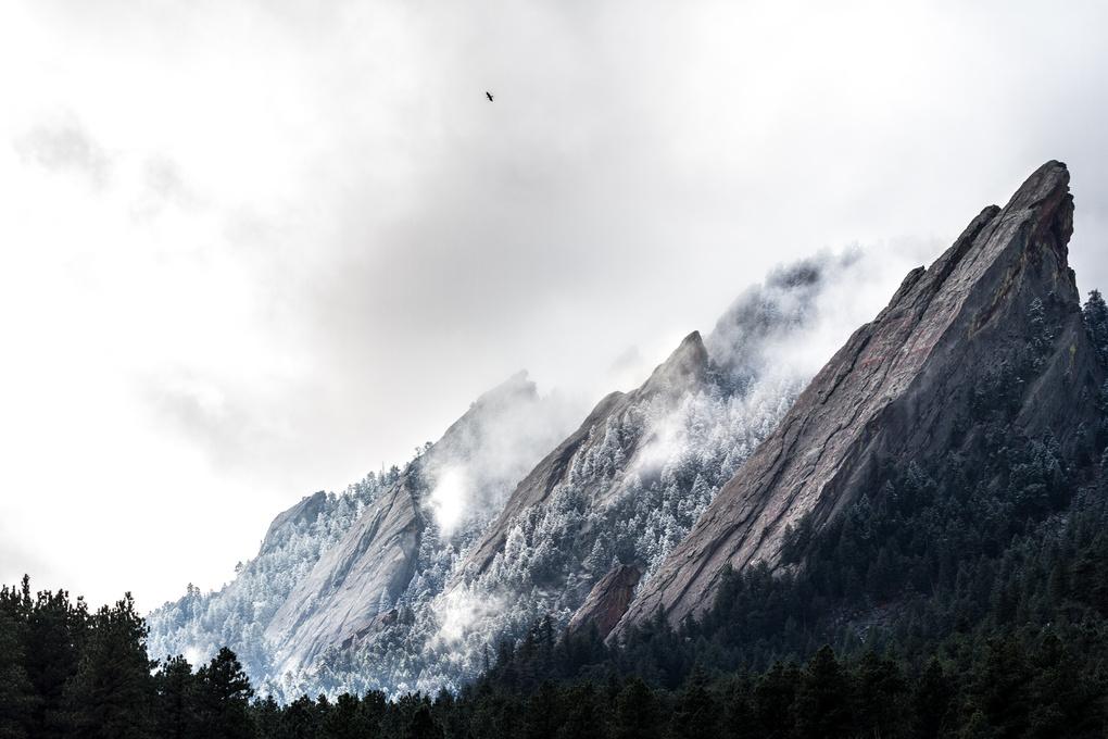 First Flatiron Snow by Will McKay