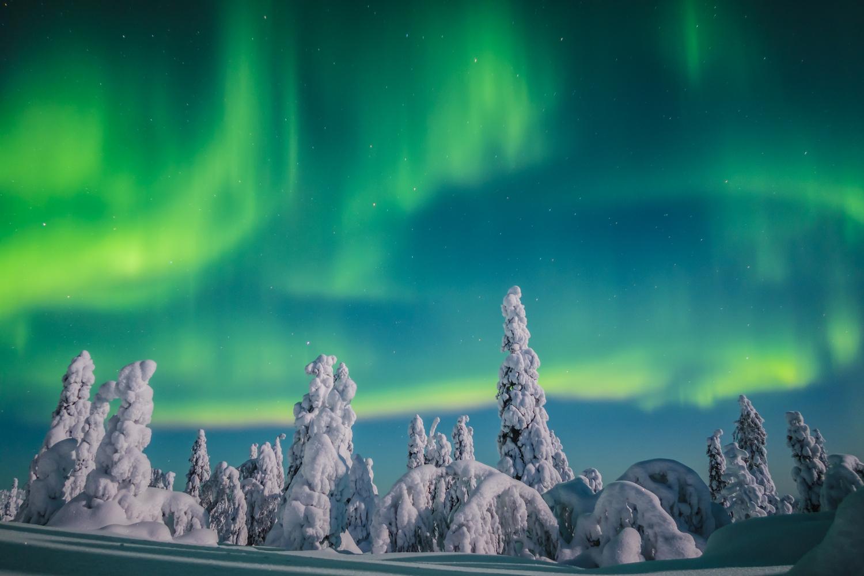 Lapland Aurora by Calum Kozma