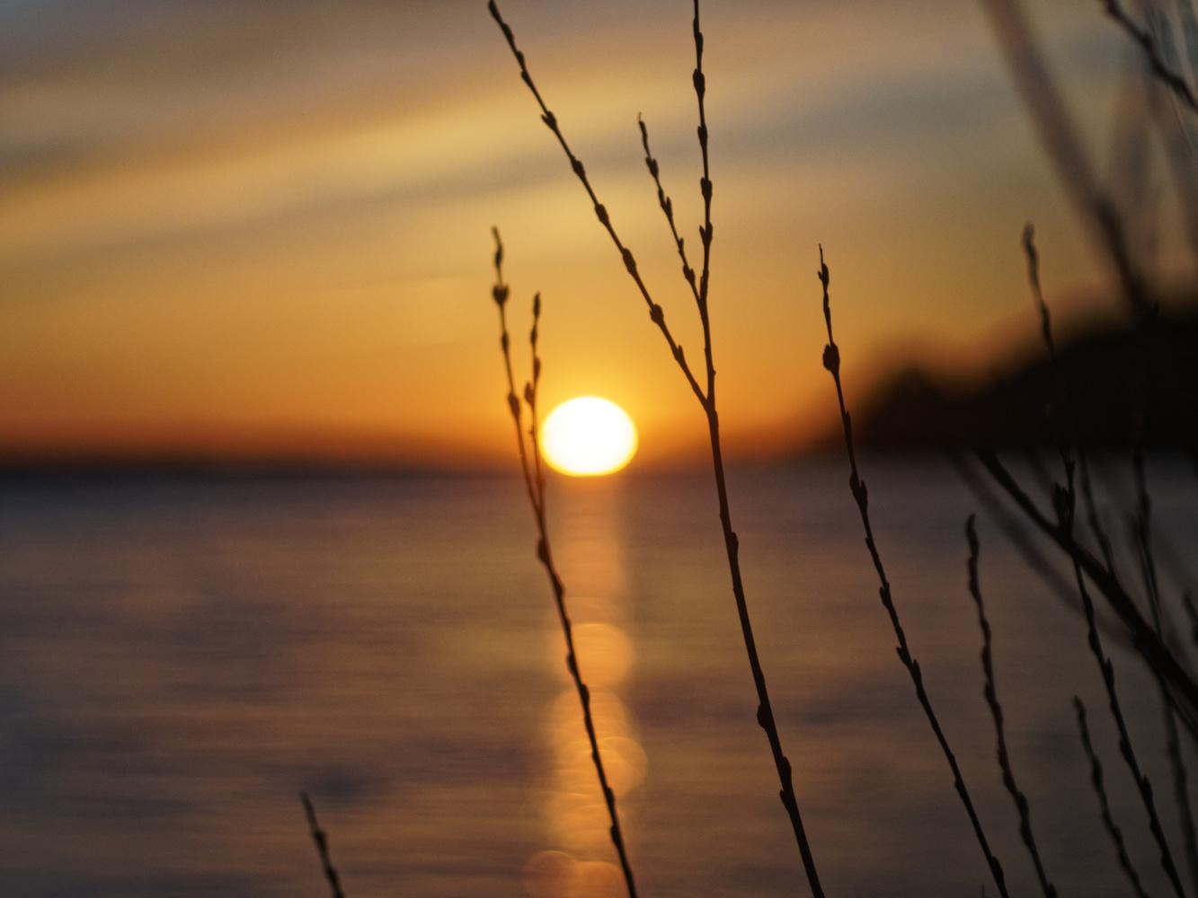 Bokeh Sunset by Kamil Czech