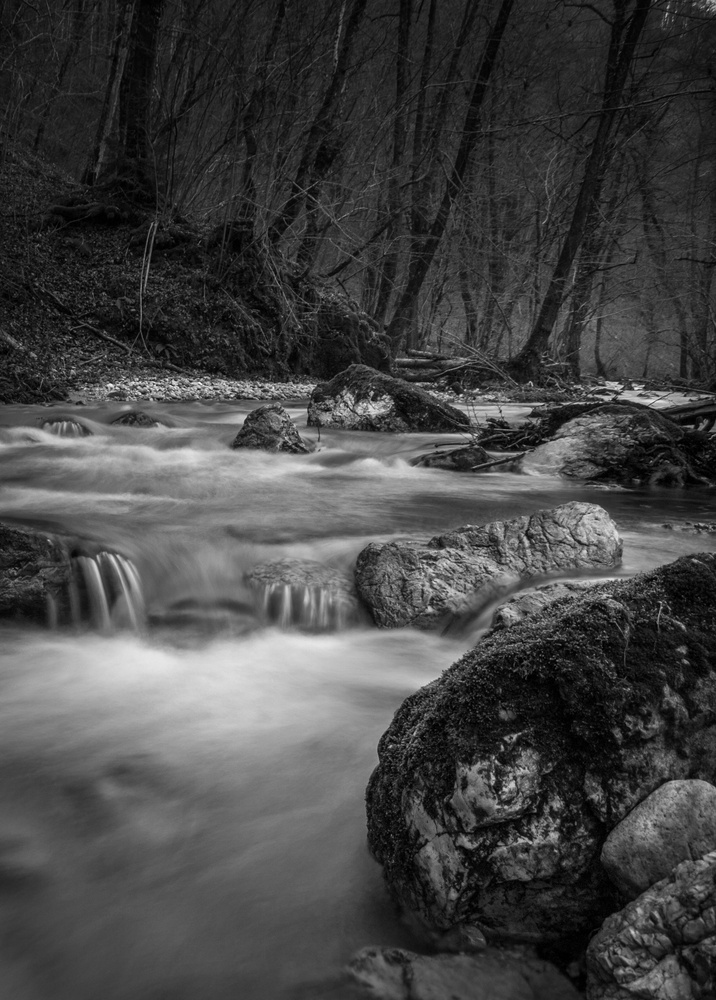 Stream by Tihomir Dubic