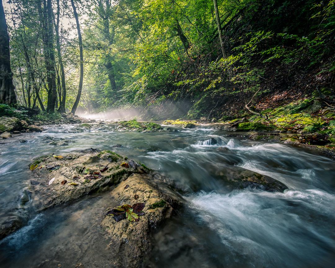 Stream Bregana by Tihomir Dubic