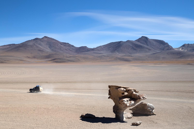 Árbol de Piedra by Klaus Balzano