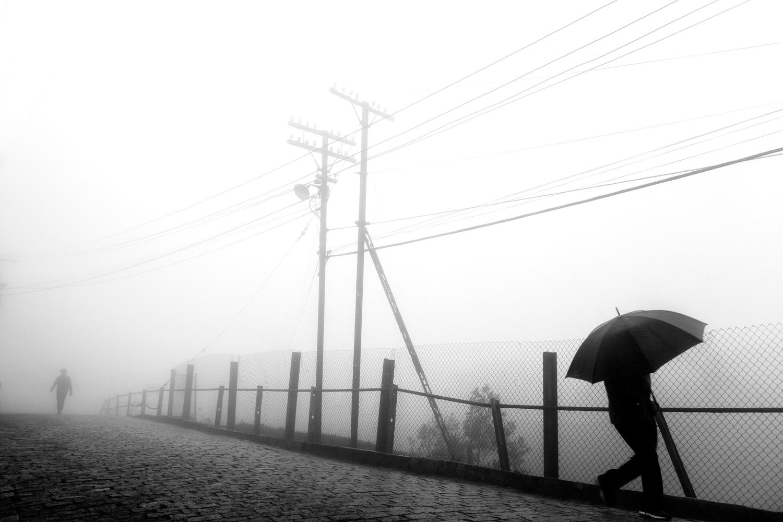 Umbrella by Klaus Balzano