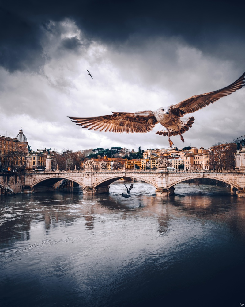 Tiber River, Rome, Italy by Nickolas Koursioumpas