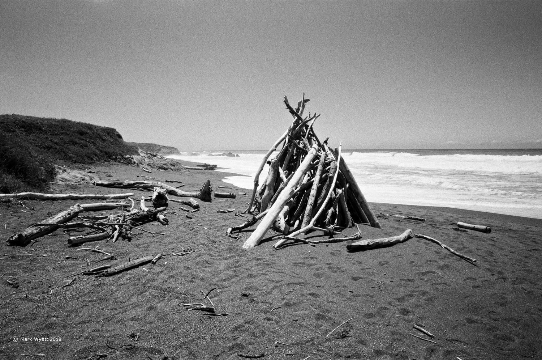 Driftwood Pile by Mark Wyatt