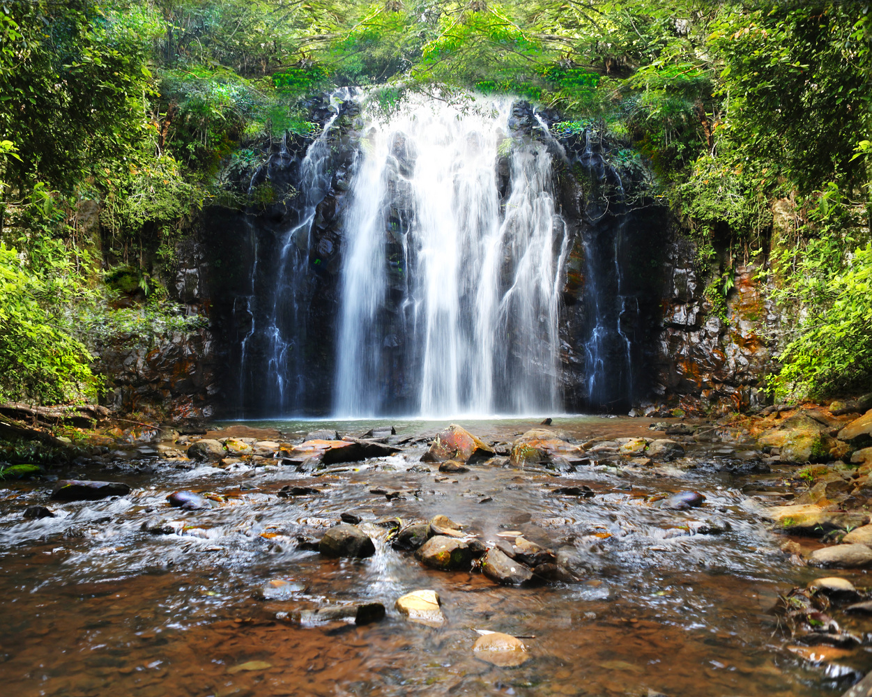 Rain Forest Waterfall by Bruce Pryde