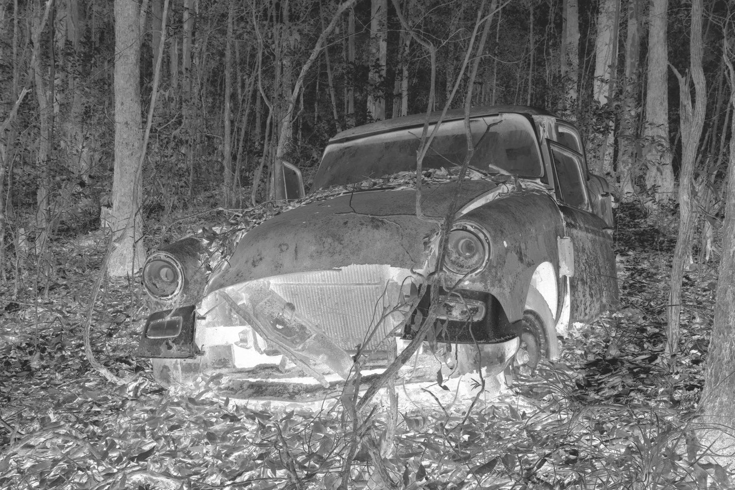 The Old Studebaker by Bruce Pryde