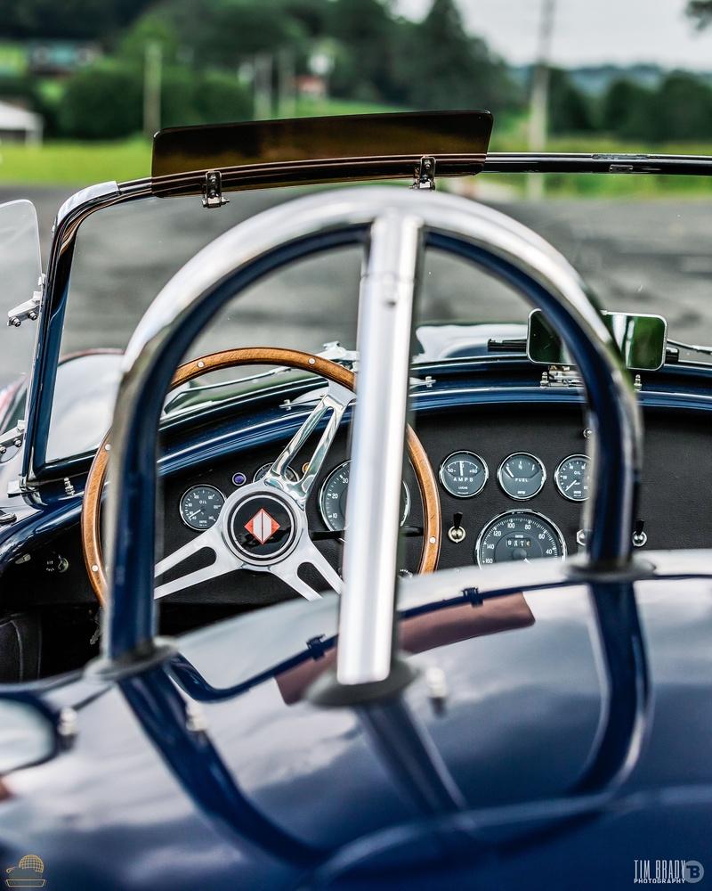Shelby Cobra by Tim Brady
