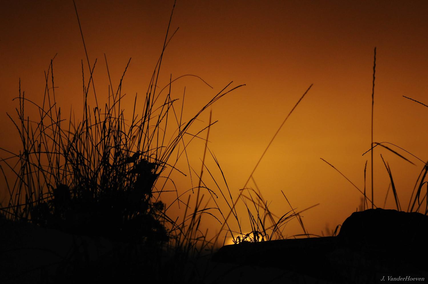 Wetland Sunset by Jake VanderHoeven