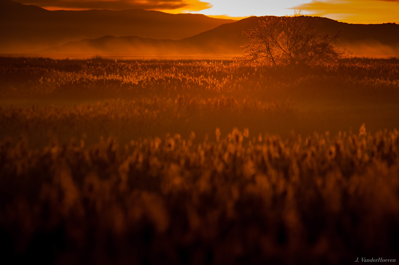 High Desert Sunset by Jake VanderHoeven
