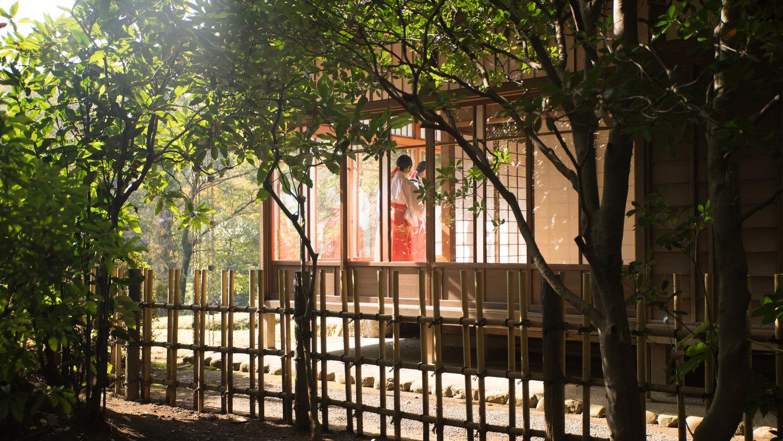 Tea House by Philippe Clairo