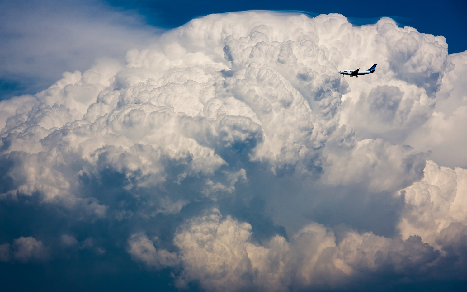 Air Transat vs The Storm Cloud by Philippe Clairo