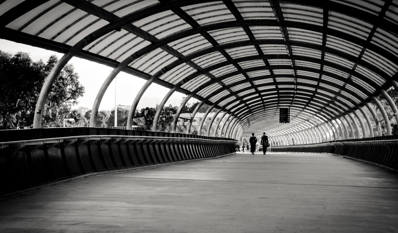 The Gangway by Avishek Ghosh