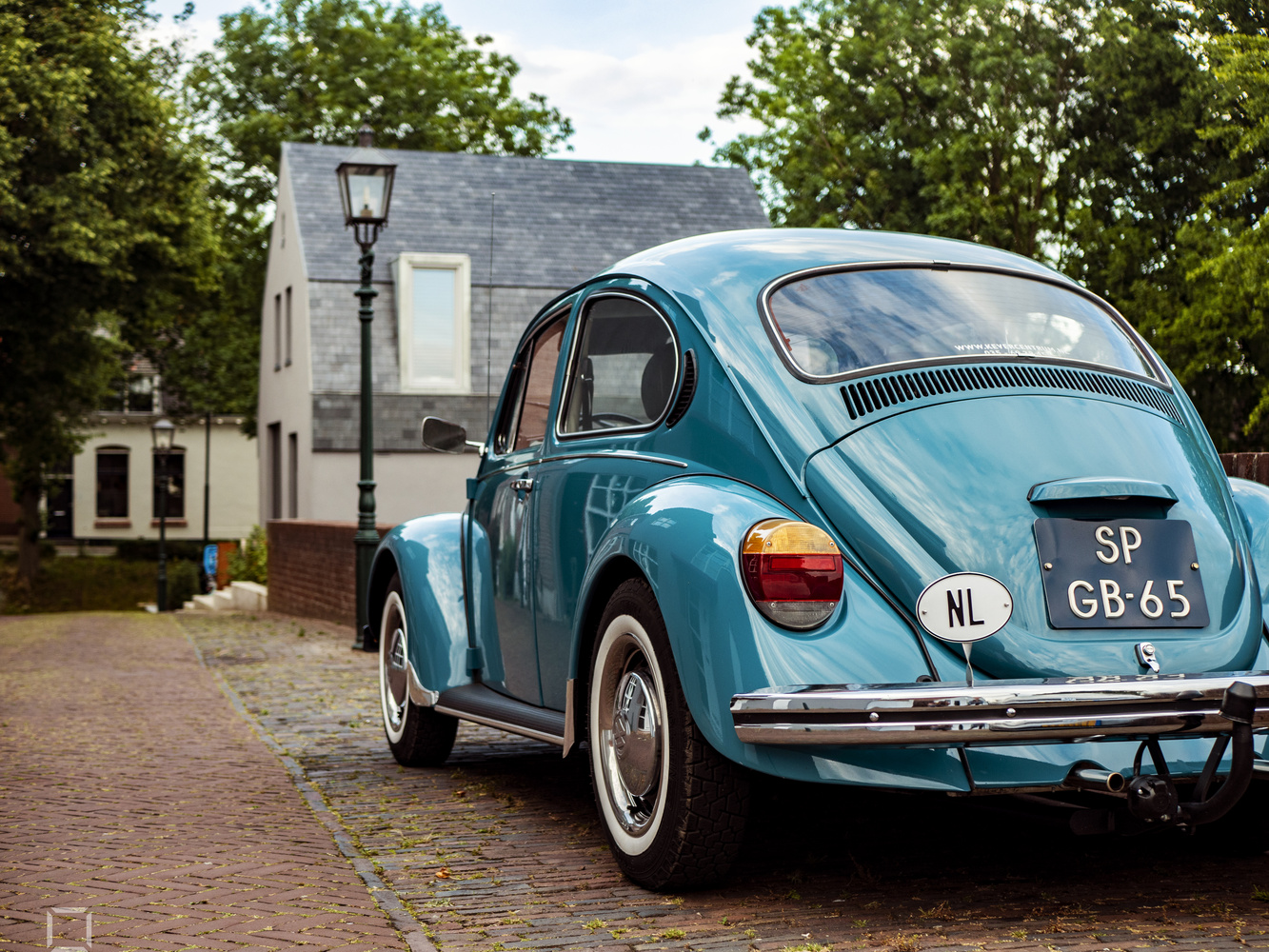 NL Beetle by Toma Popescu