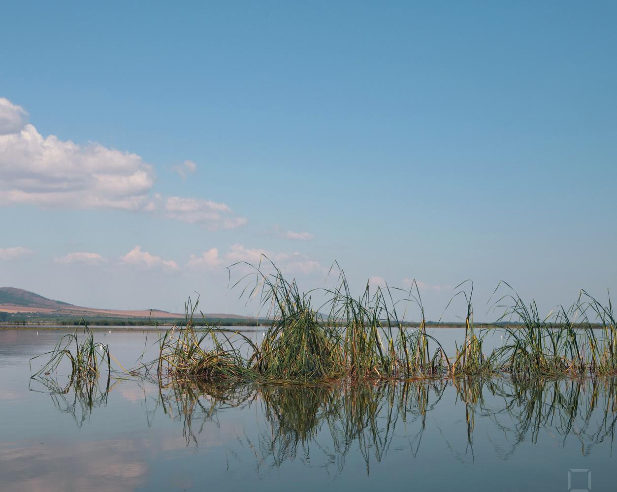 Danube Canals by Toma Popescu