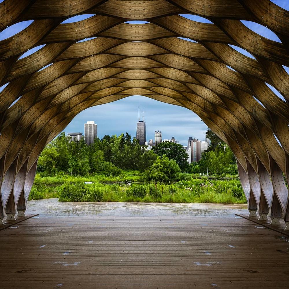Chicago by rami yazgi