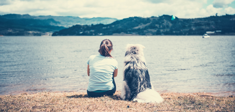 My Girlfriend and My Dog by Vijay Pratap Singh