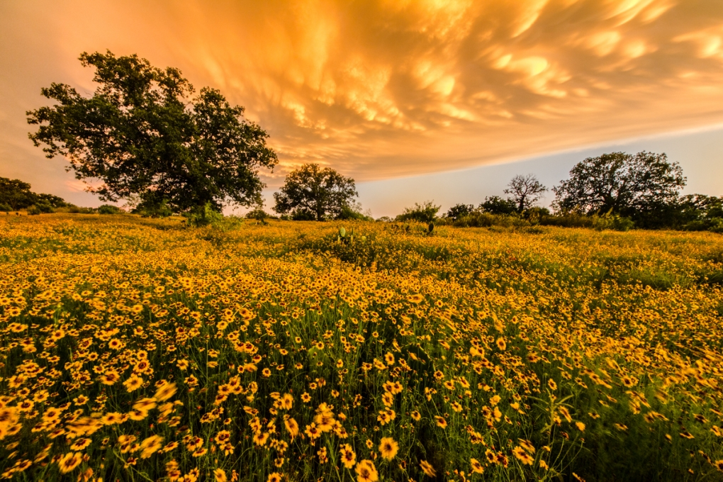 Storm over the Texas Hill Country by David Vaughn