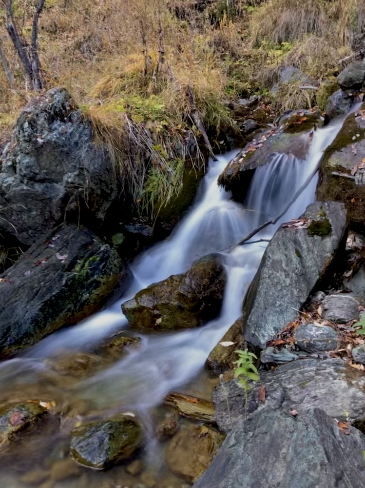 Autumn river flow by Ljupcho Vasilevski