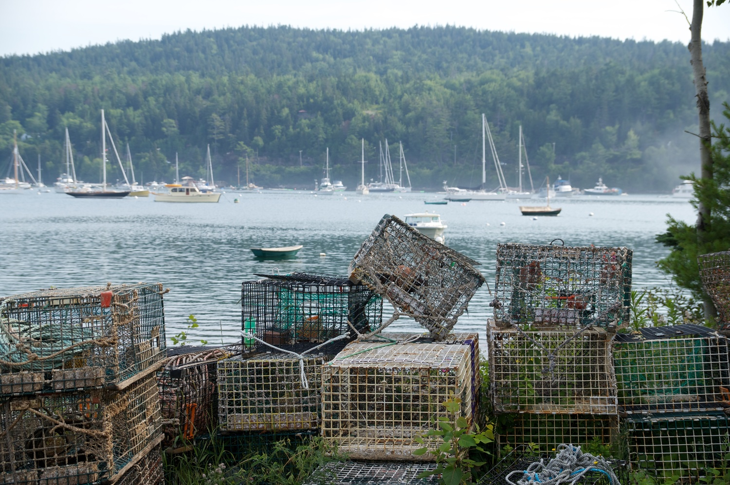 Lobster Traps by Eric Kremer
