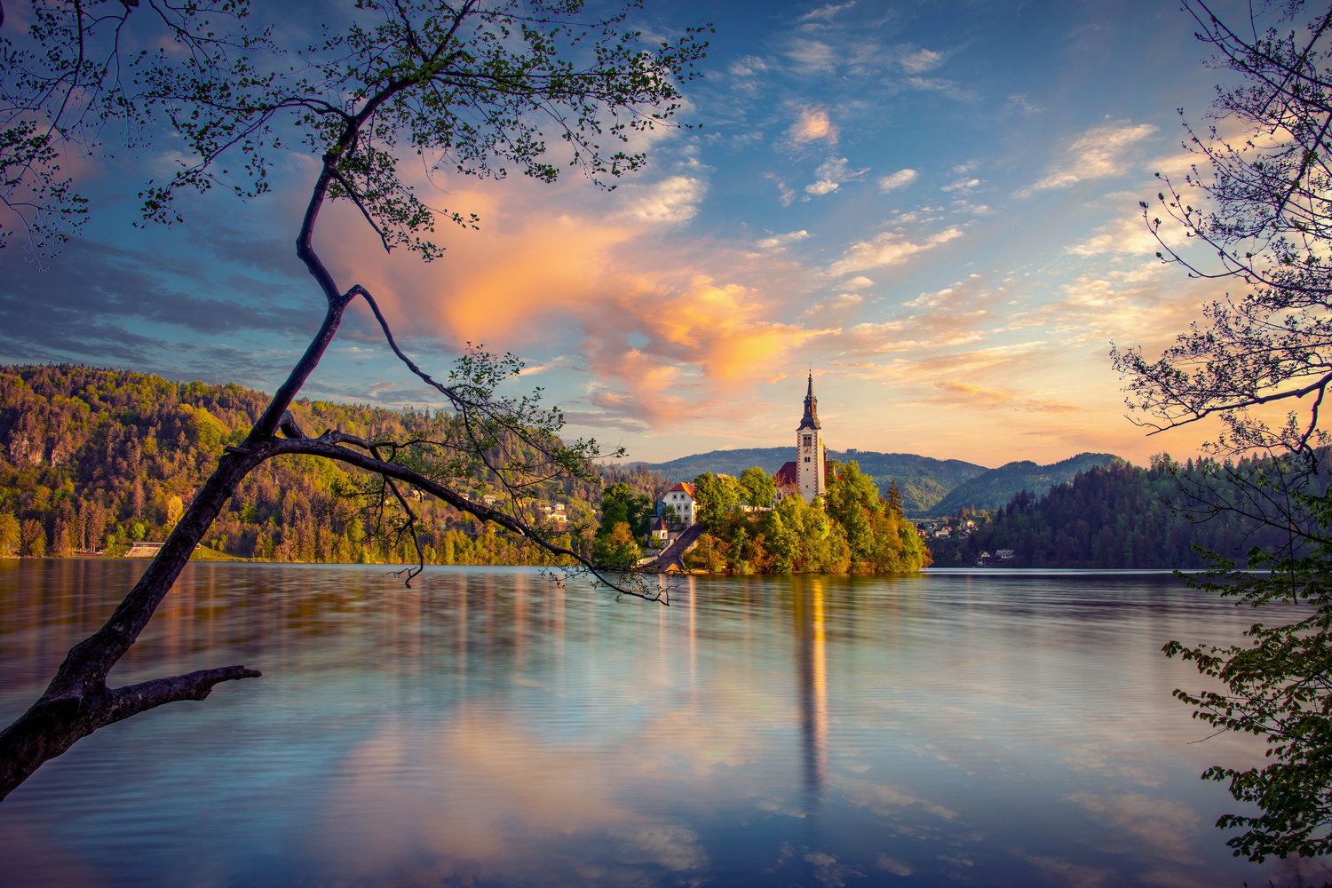 Morning Lake Bled by Alex Hill