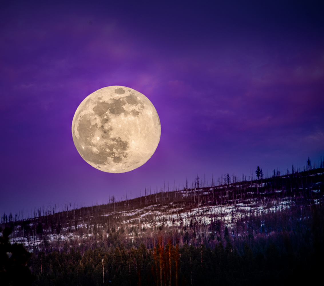 Moon Shot by Alex Hill