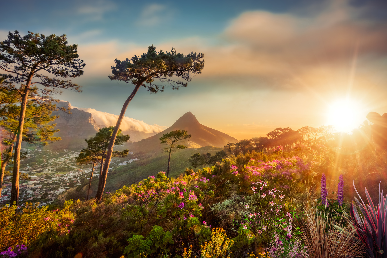Sunset on Table Mountain by Alex Hill