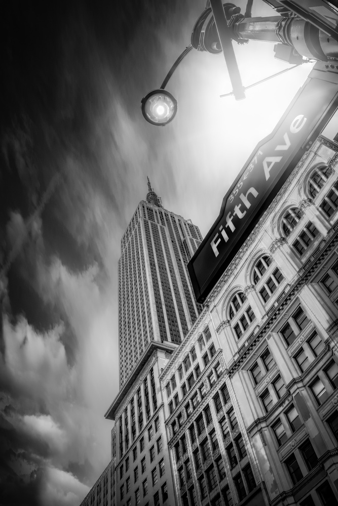 Fifth Avenue by Alex Hill