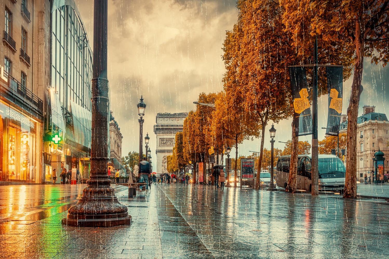 Rain on the Champs-Élysées by Alex Hill