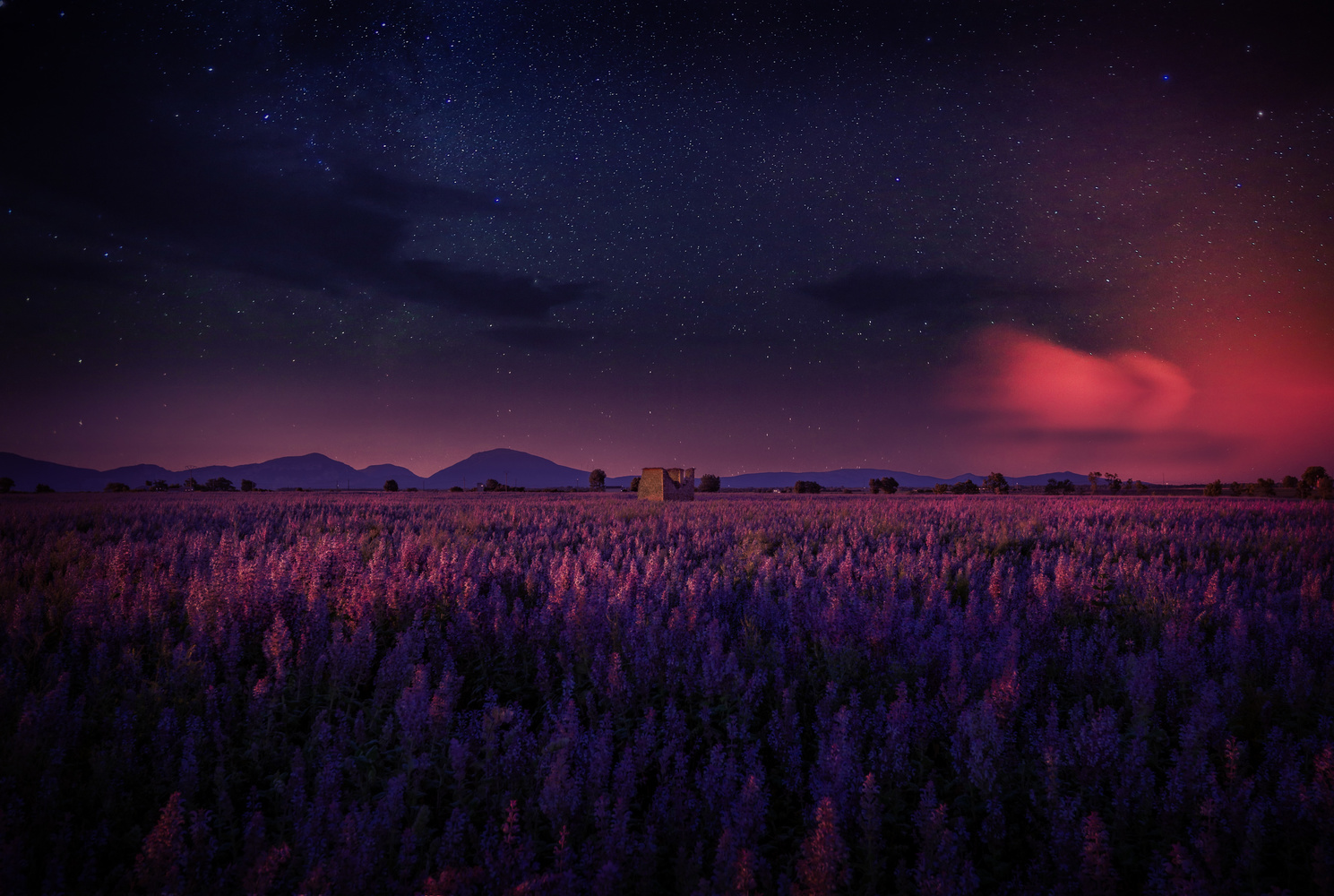 Night in Provence by Alex Hill