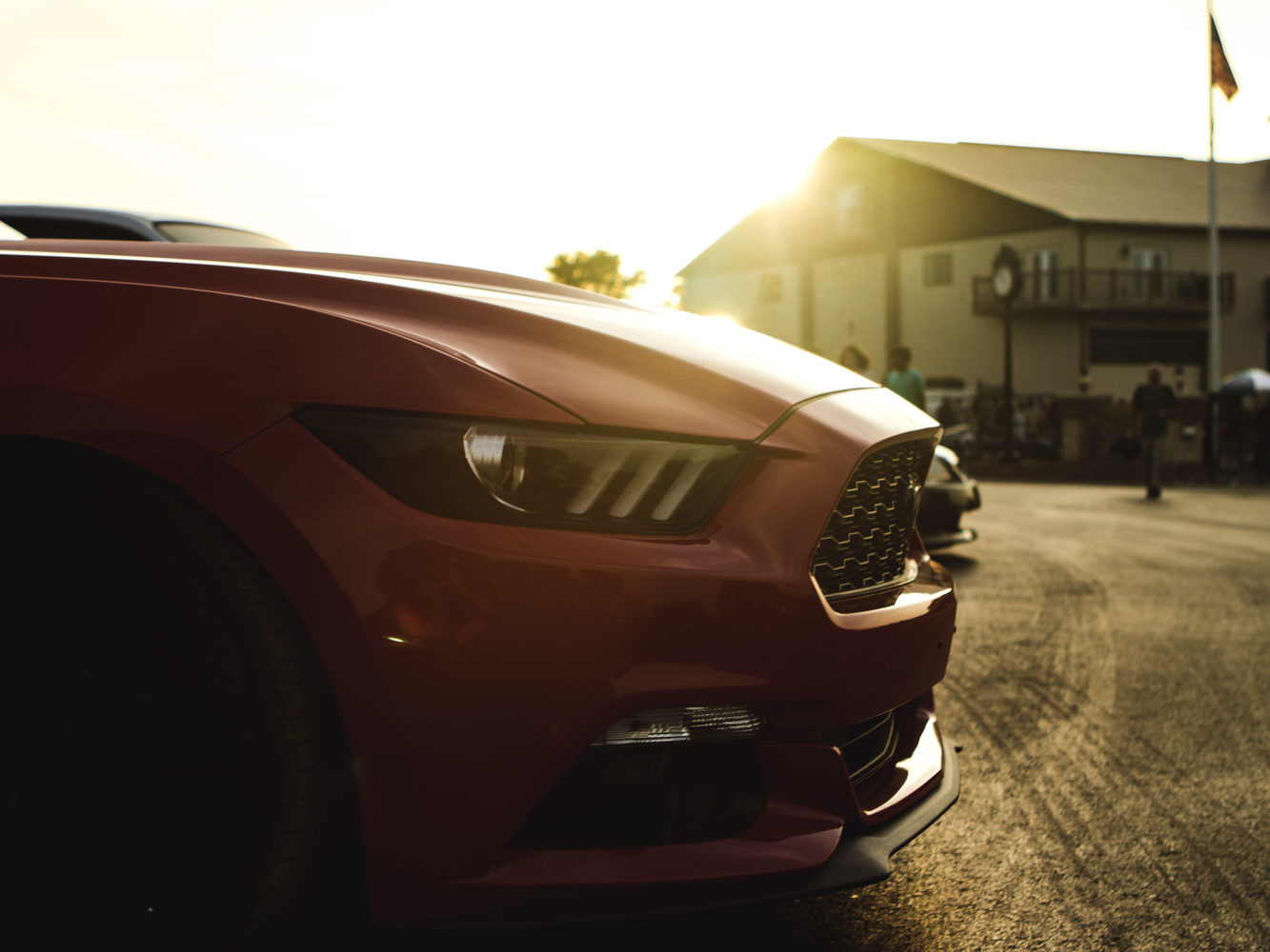 Mustang at Sunset by Nick Cody
