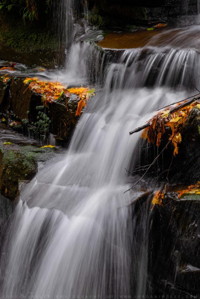 Autumn Flow by Jordan Inglee