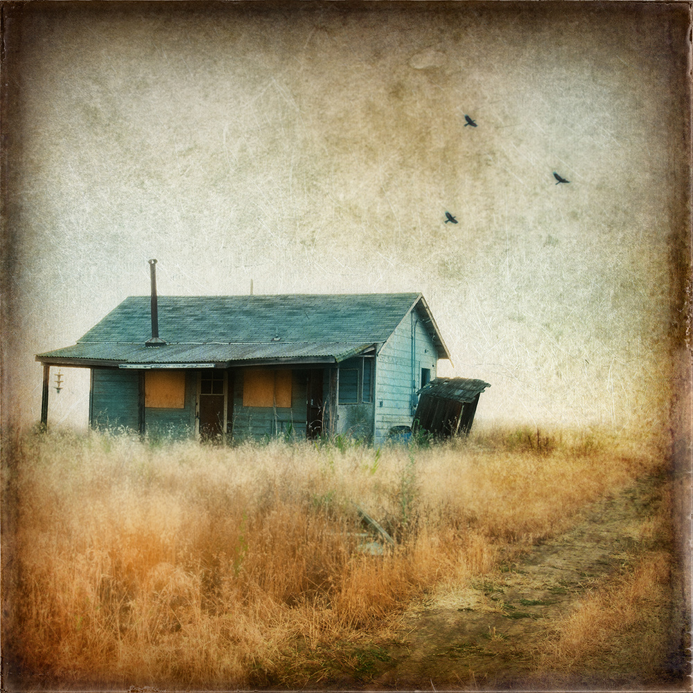 Hobo House by Caroline Julianna Thompson