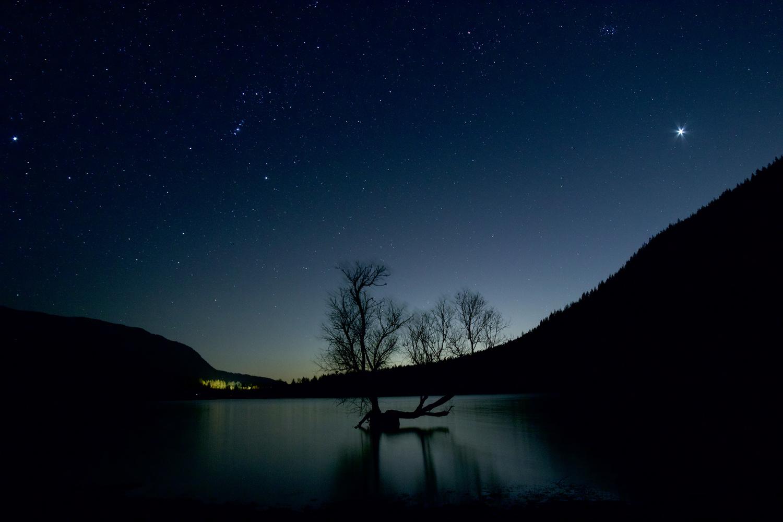 Self-Isolating Under the Stars by Melanie LeDuc