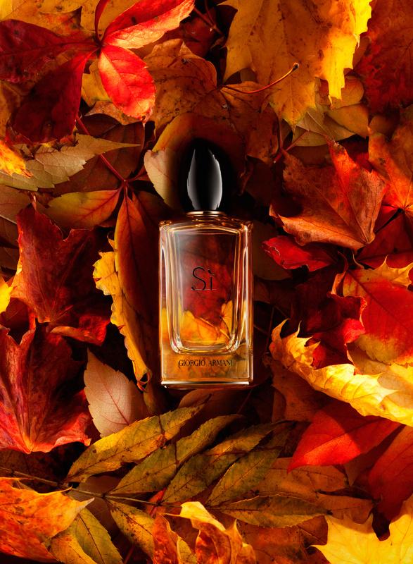 Autumn by Nazar Andriychuk