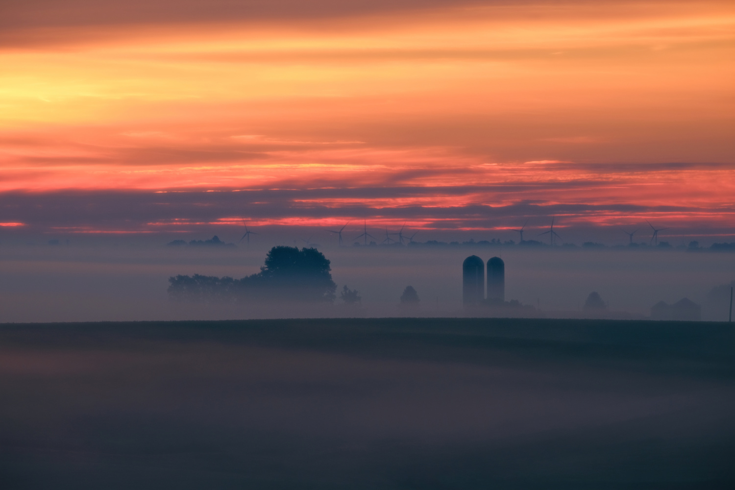 The day dawns by Will Hoyer