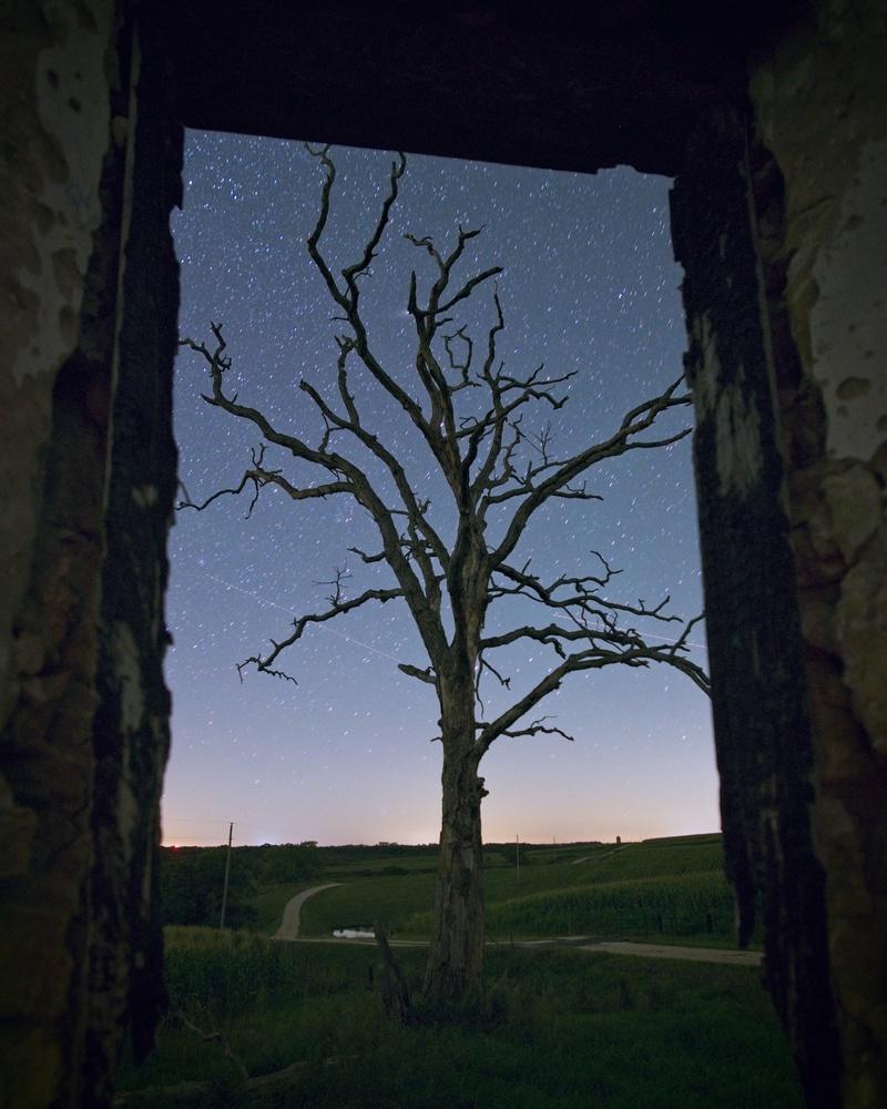 Framed by Will Hoyer