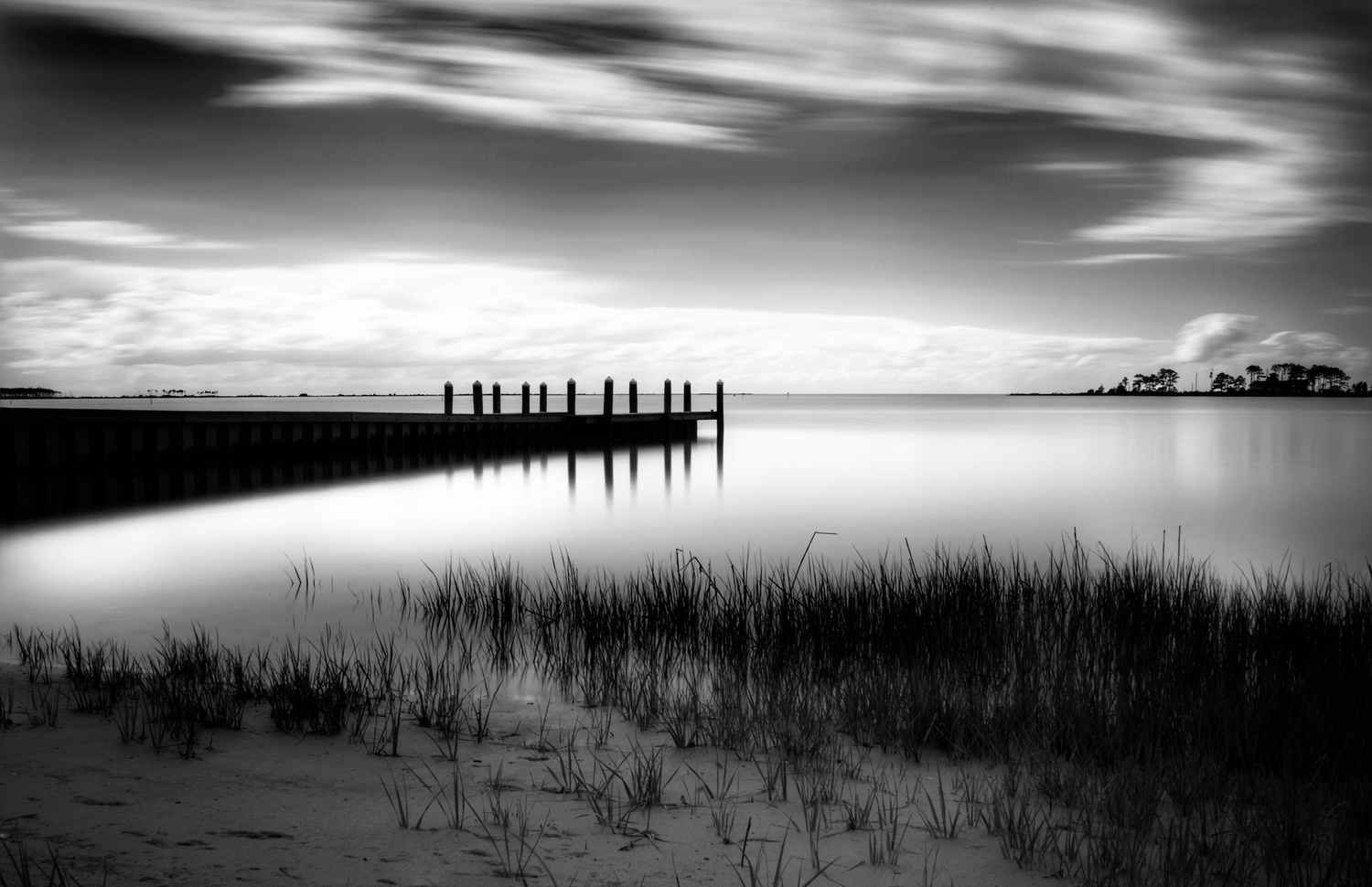 Long Exposure by Carla Petrillo