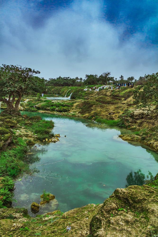pond by Kunal Mehta