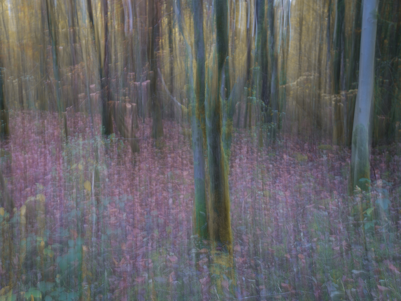 ICM by Victor Jolley